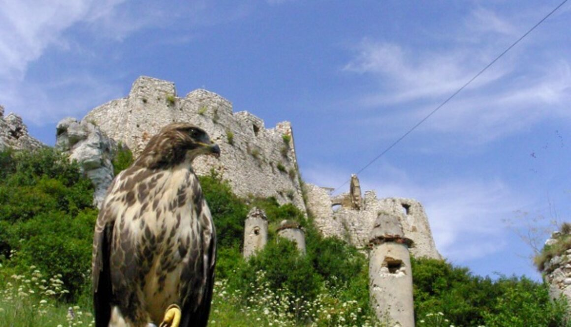 Slovakia: Small Country, Big Outlook