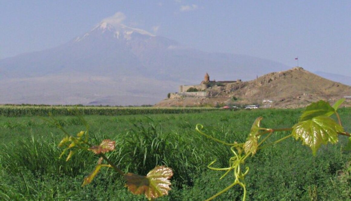 Turkey's Mount Ararat (viewed from Armenia)